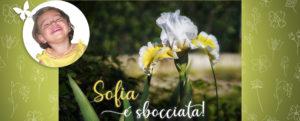 Sofia è sbocciata. La primavera di Voa Voa ! Amici di Sofia